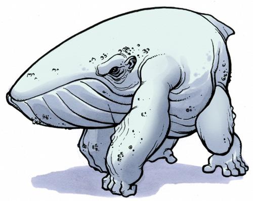 whalerilla.jpg